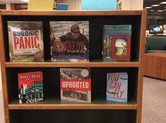 Nonfiction Display